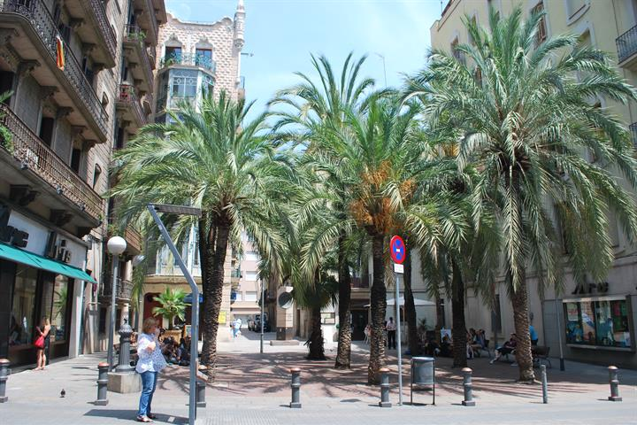 Barcelona city guide: Gràcia, an independent 'city'