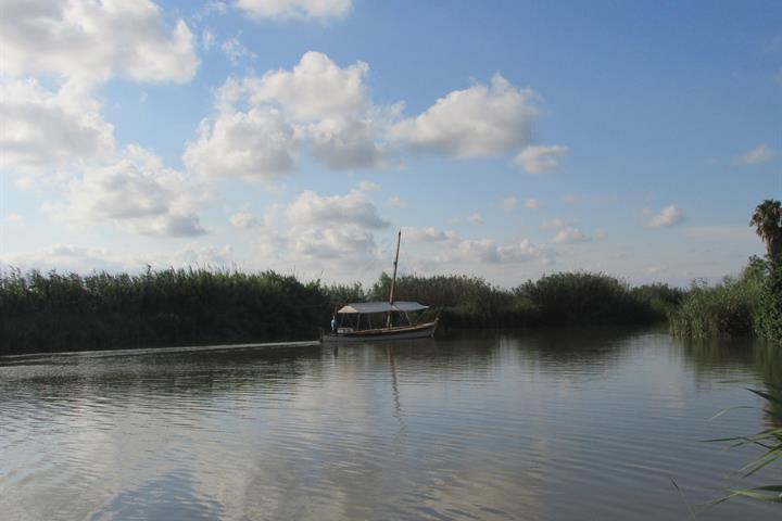 Exploring La Albufera wetlands and El Palmar, Valencia