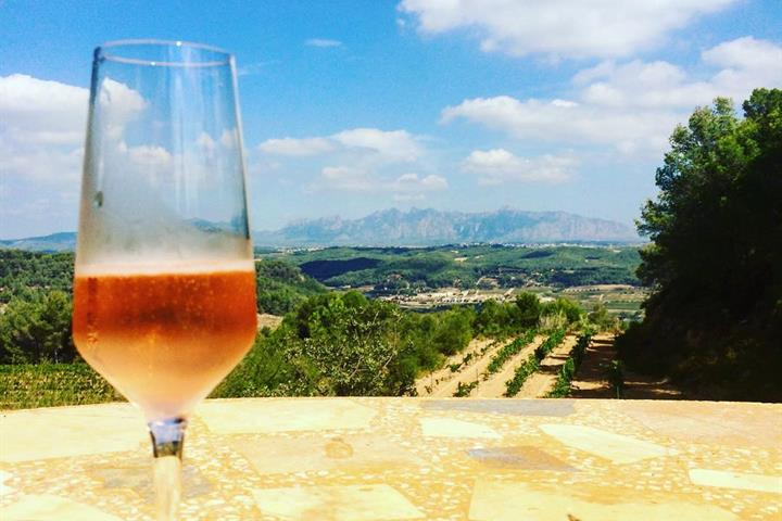 Cava Route through Penedès: Wine Tourism in Catalonia