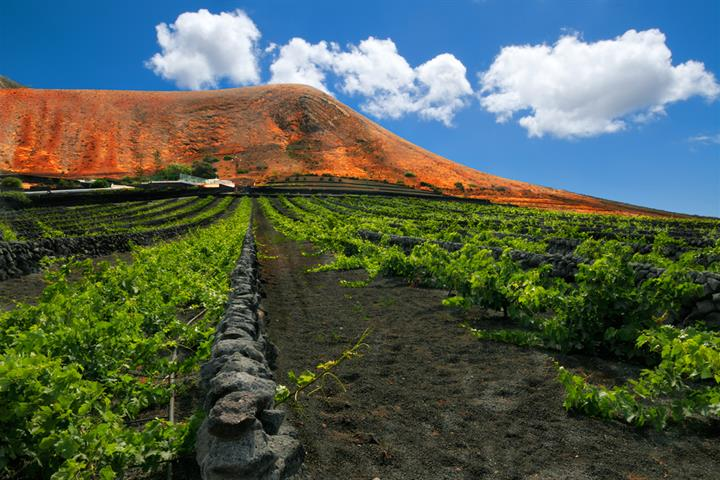 Five Hikes You'll Like on the Canary Islands