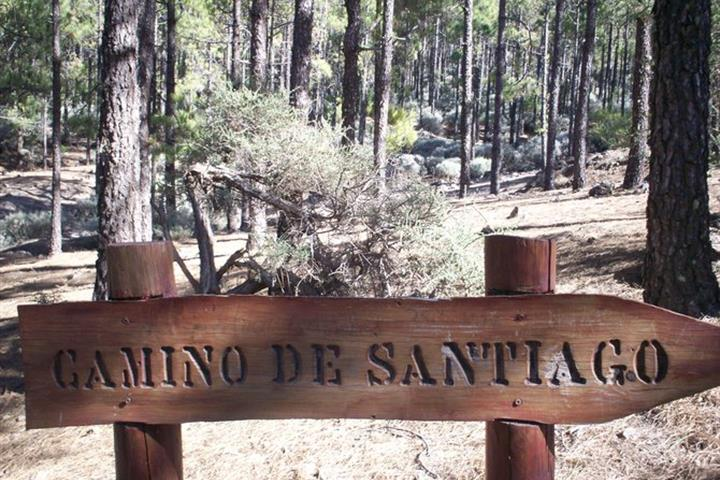 Best Hiking Destinations on Gran Canaria