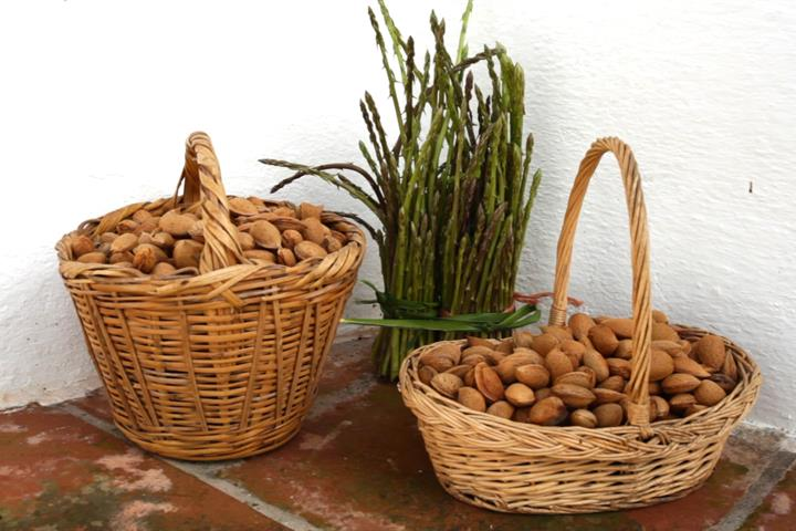 A late harvest in Andalucia