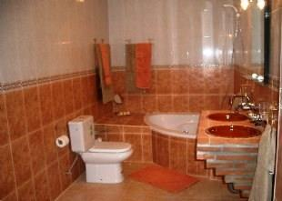 Lower level family bathroom