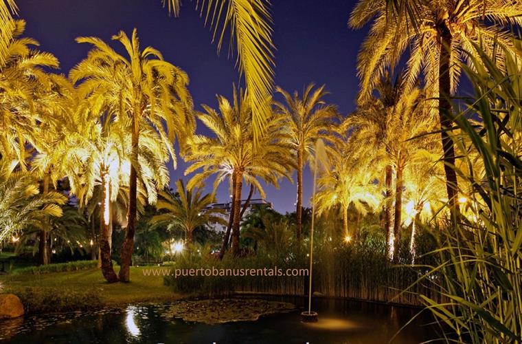 Gardens of Club Playas del Duque at night