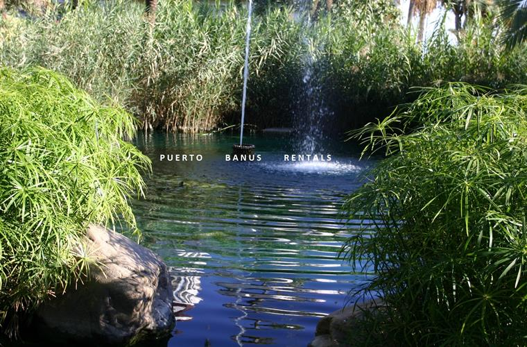 Water features & ponds in the tropical gardens of Playas del Duque