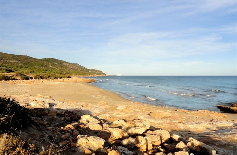 BEACH IN THE IRTA NATURAL PARK (6KM SOUTH)