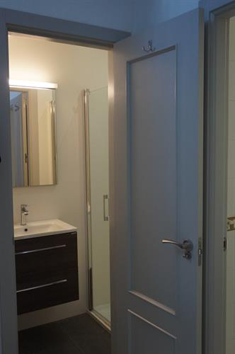Downstairs Cloakroom (with 2nd walk-in shower)