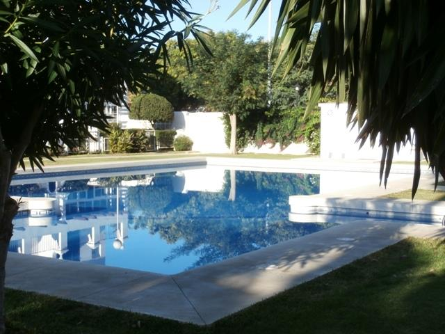 swimming pool in front of house
