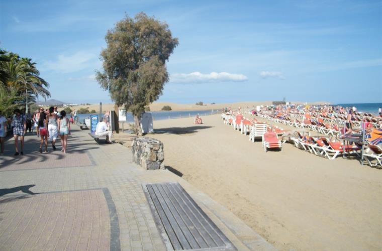SAND BEACH, CHARCA and DUNES of MASPALOMAS