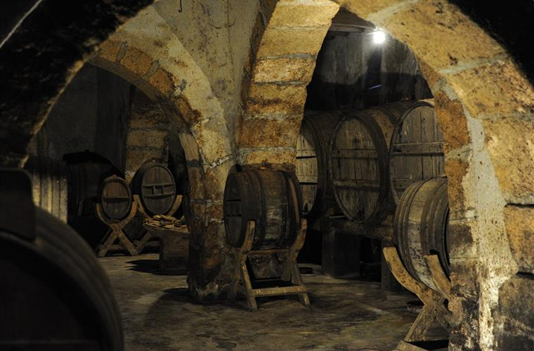 Winetastings in nearby bodegas