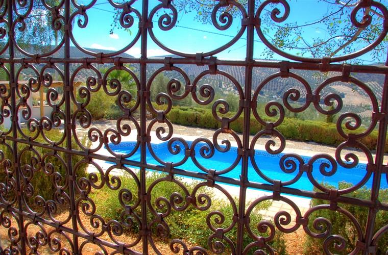 Pool Viewed through Moroccan Trellis