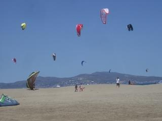 Kites on the Beach at Sant Pere