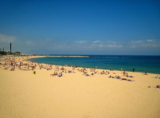You can also visit the amazing Barcelona and its beach