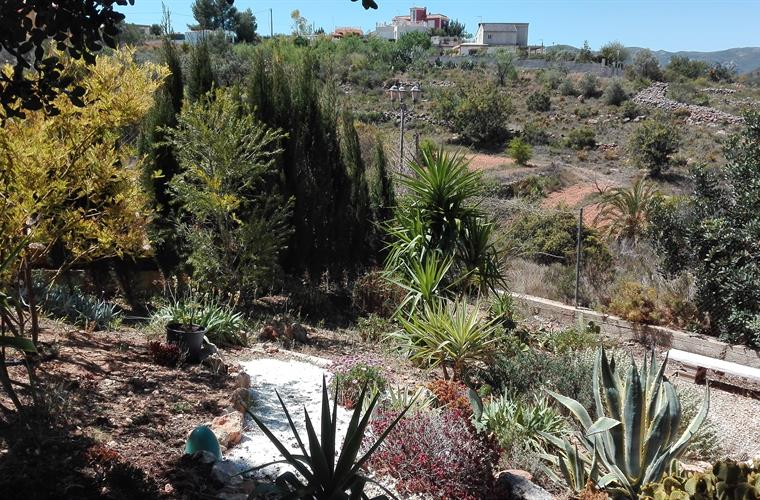 Cactus garden,offering peaceful area with views.