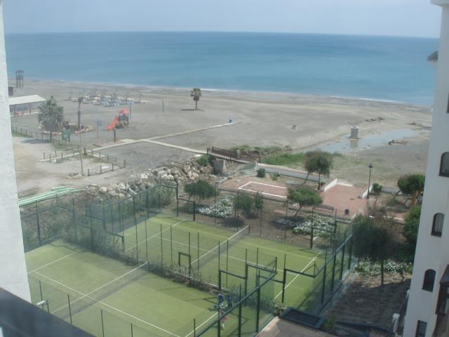 paddle tennis marina duquesa