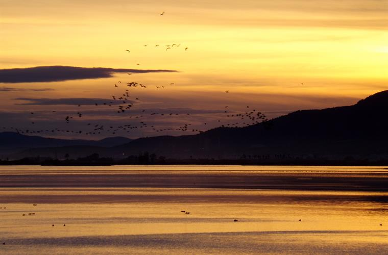 Enjoy wonderful sunsets at the Ebro Delta