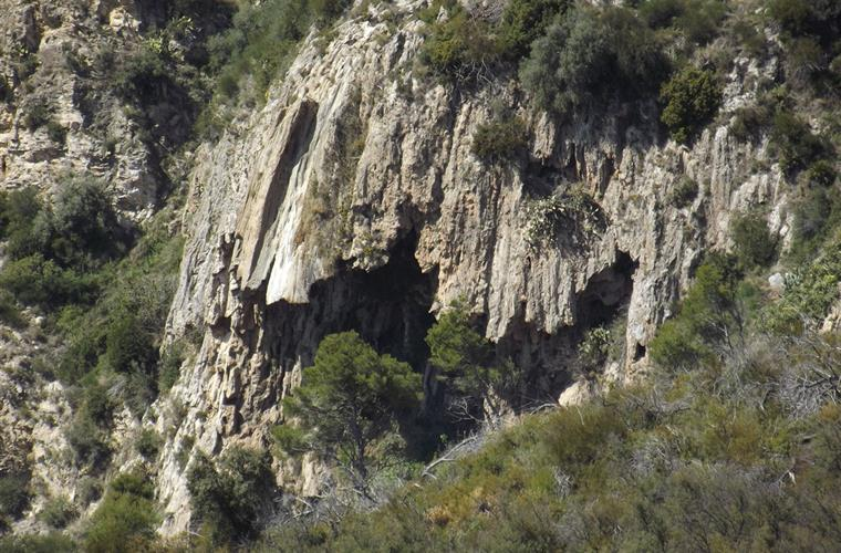 Cave seen from the house.