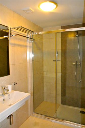Bathroom 1 (ground floor) with the large shower