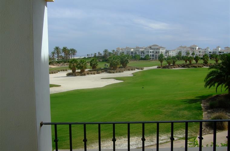 View from patio of fairway