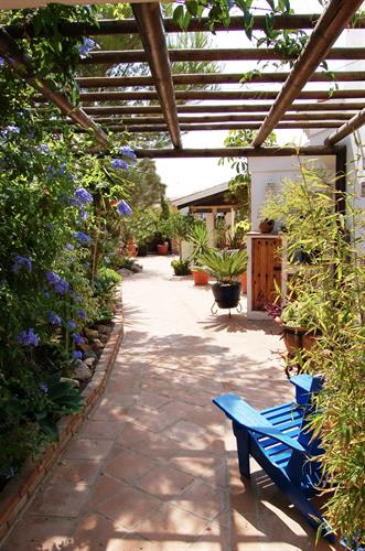 The private courtyard garden towards the sitting room.