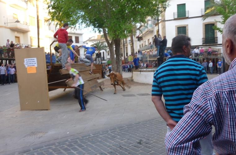 Running from the bulls in Javea Old Town.  April 2014