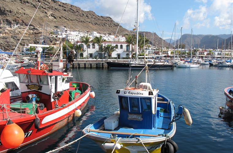 From the fishing harbour in Puerto de Mogan