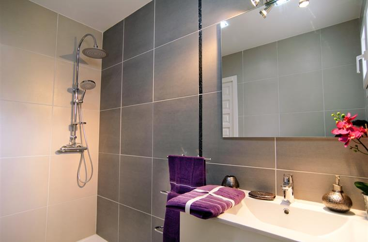 Ensuite bathroom with shower, fully equipped