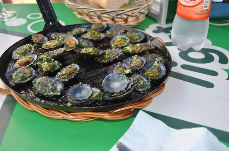 delicious limpets with mojo sauce