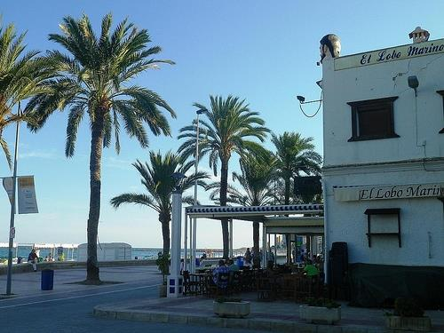 The Beach Promenade at El Campello