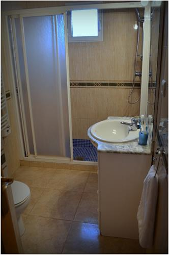 Family bathroom downstairs: big shower, sink, toilet.