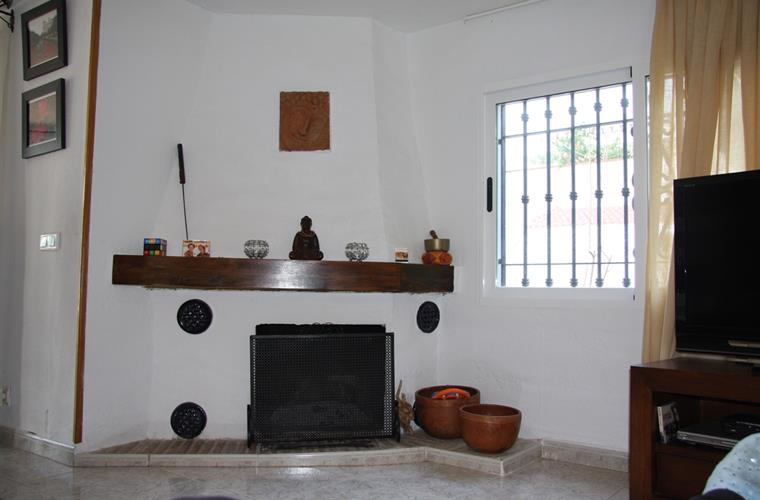 Living-room's Fireplace