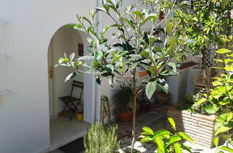 Patio at the entrance of the apartment.
