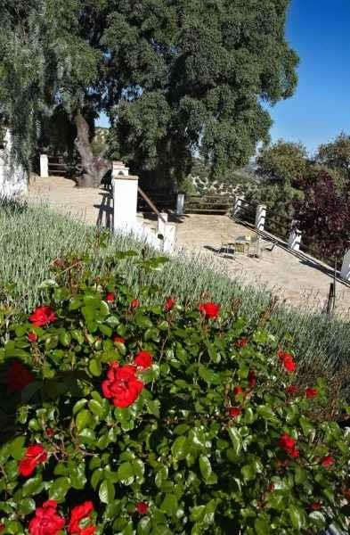 Holiday Country House For Rent In Izn Jar Monte Claros