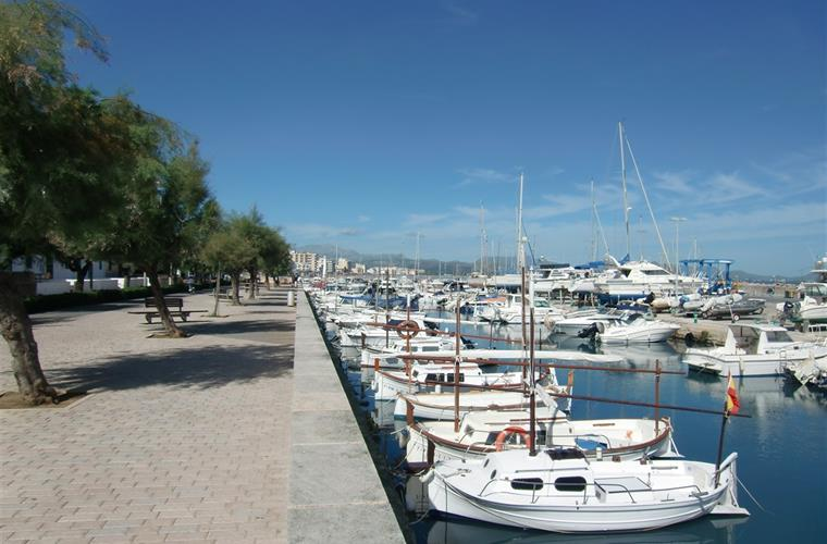 The marina in Can Picafort