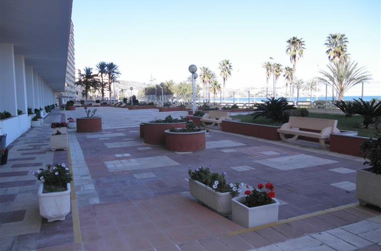 Large communal terrace and garden area.