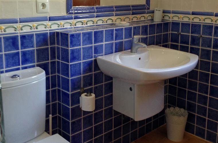 Large common family bathroom