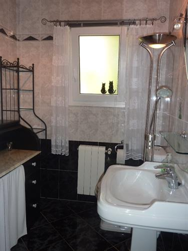Second bathroom with big shower