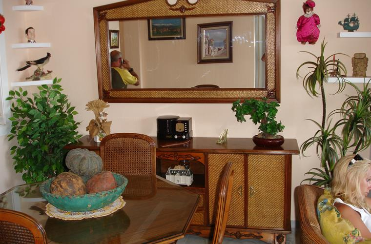 The livingroom - typical spanish style