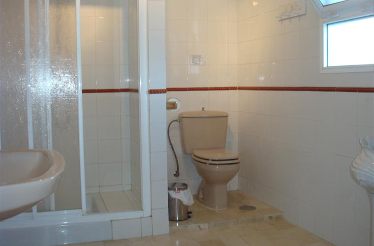Master Bedroom's en-suite shower and toilet