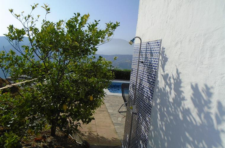 Outdoor Shower & Lemon Tree