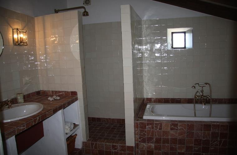 Bathroom with a bubble bath and separate shower.