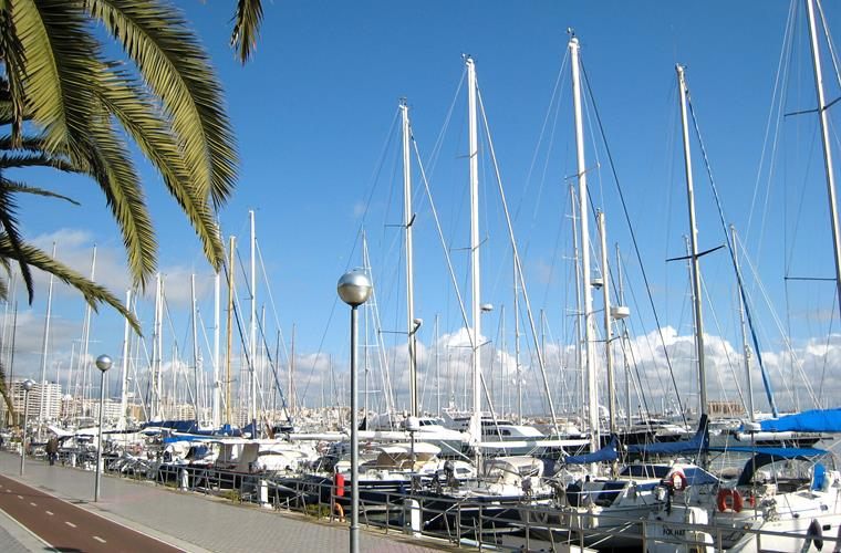 Palma Port just a 7 min walk away, has fantastic cycle paths