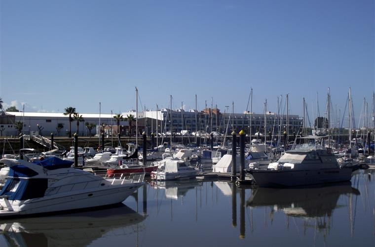 The lovely marina close by.