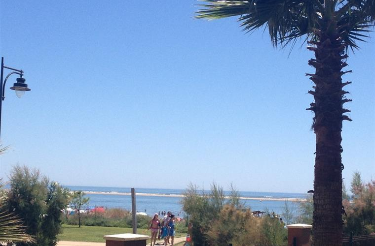 The view from the terrace. See how close the beach is!