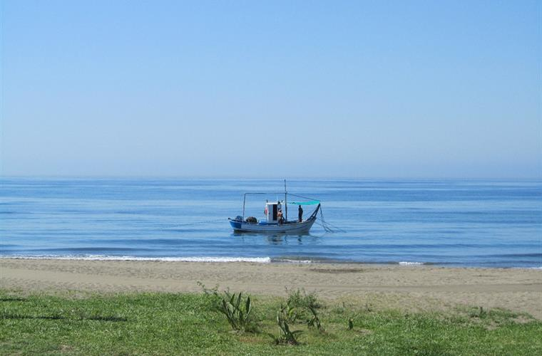 A local fishing boat