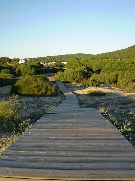 Way to the beach, the the background you see Casa Meca