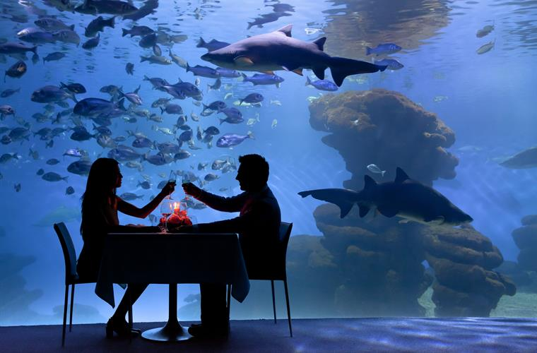 The Aquarium at Palma only 15 mins drive away