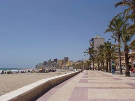 El Campello beach nearby