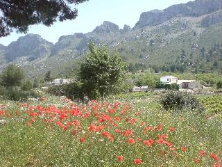 Sierra Bernia from near Pinos