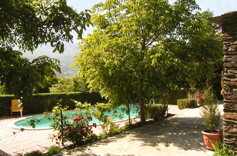 Parts of the pool area a shaded by walnut trees